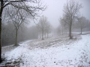 Newlands Corner in Snow