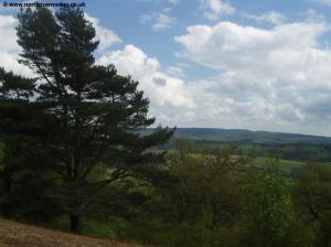 View from St Martha's Hill