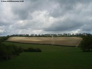 Fields near Chantry Wood