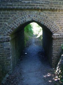 One of the tunnels on the path through the cemetery