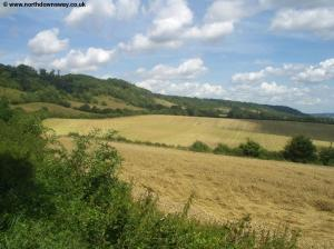 The North Downs near Wrotham